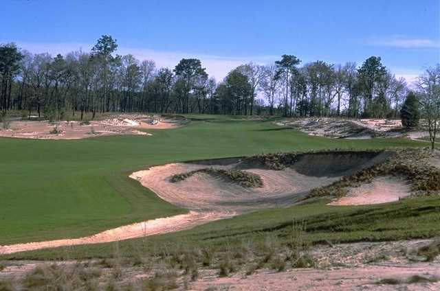 Pine Barrens at World Woods: View from No.5