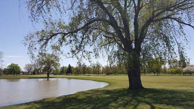 A sunny day view from Saginaw Valley Golf Course.