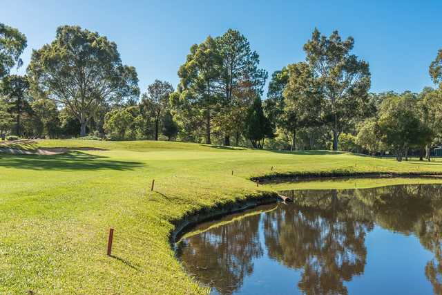 A sunny day view of a green at Gosford Golf Club.