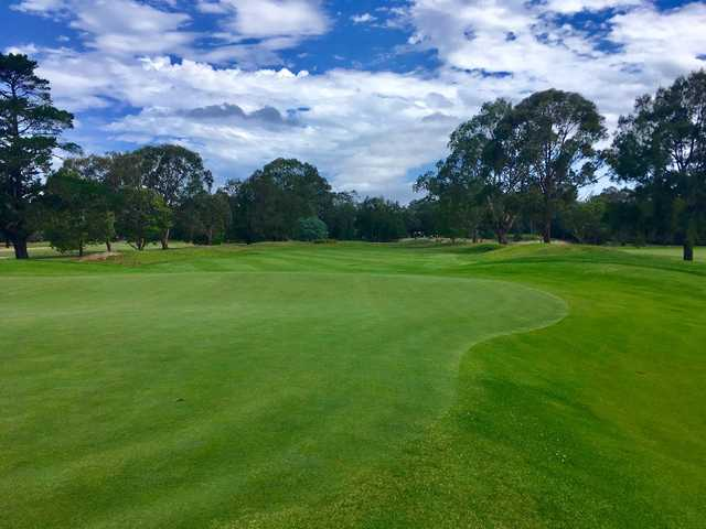 A view from Georges River Golf Course