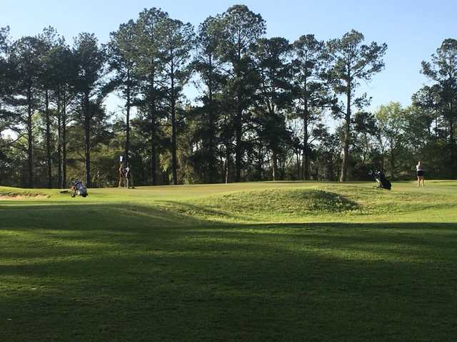 A sunny day view of a green at Moody Quiet Pines Golf Course.