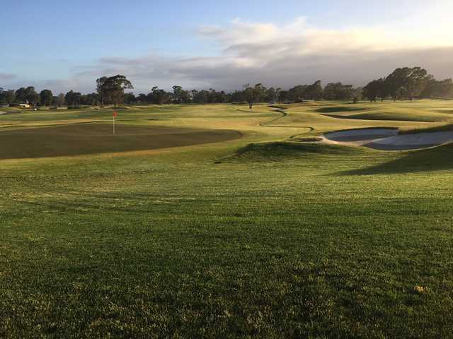 View of a green from South Course at Corica Park
