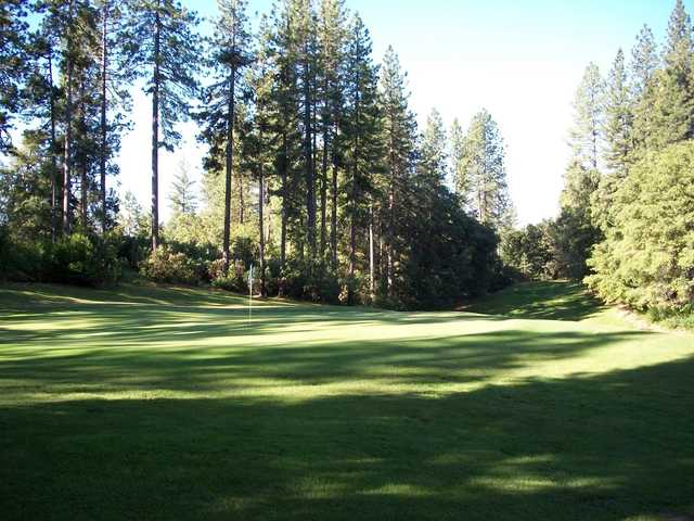 A sunny day view of a hole at Forest Meadows Golf Course.