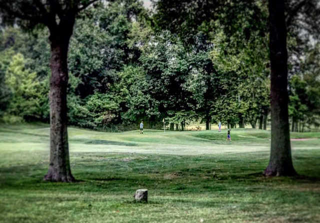 A view of a hole at Quail Creek Golf Course.