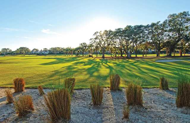 A morning day view of a tee at Seabrook Island Resort.
