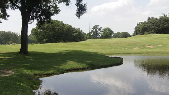A view of a hole at City Park Golf Course.