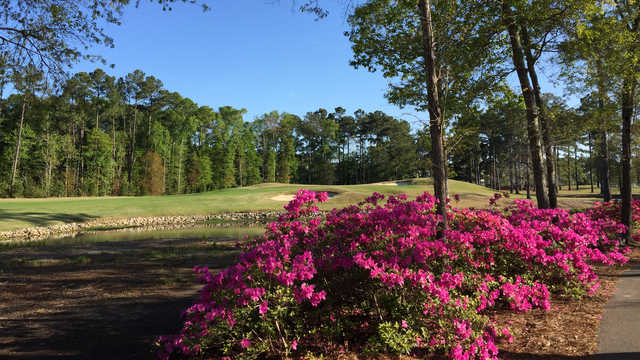 A view of a hole at River Oaks Golf Club.