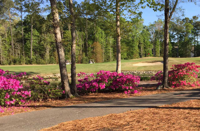 A sunny day view of a green at River Oaks Golf Club.