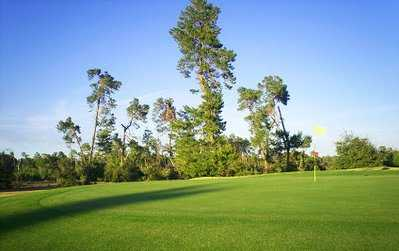 A view of green from Marion Oaks Country Club