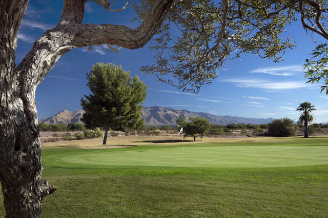 A view from Silverbell Municipal Golf Course
