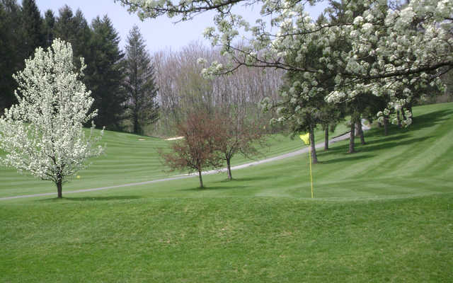 A view of a green at Willow Hollow Golf Course.