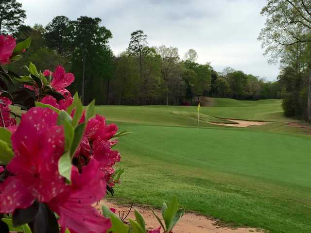 A view of a green at Dancing Rabbit Golf Club.