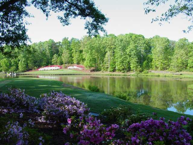 A view of a tee from The Preserve at Verdae