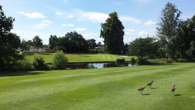 A view of a hole at Sidcup Golf Club.