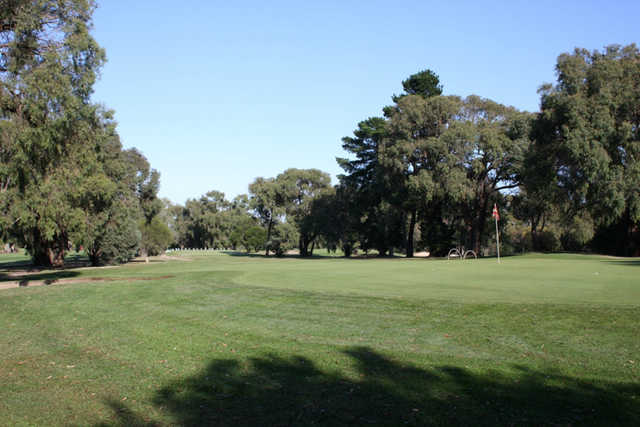 A view of a green at Churchill Park Golf Club.