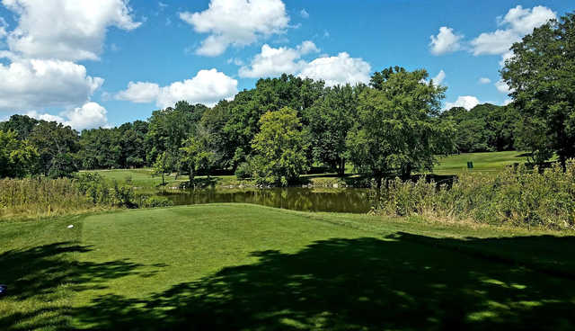A view over a pond at Flushing Valley Country Club.