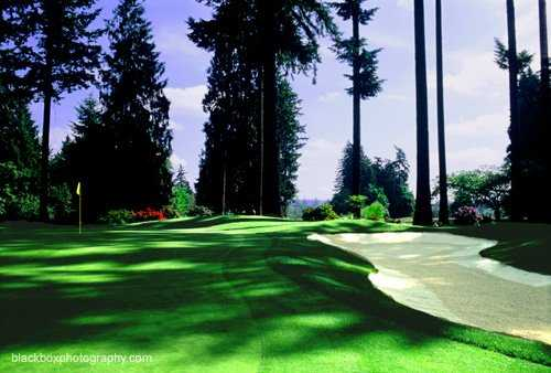 A view of a hole at Tualatin Country Club.