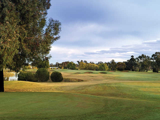 View of the 15th hole from the East Course at Rich River Golf Club Resort