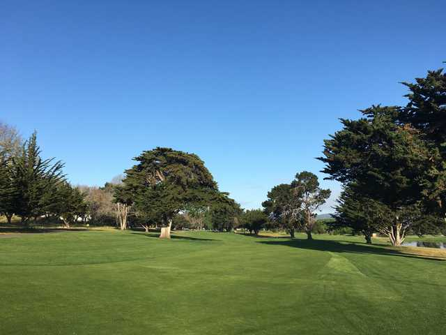 A view from a fairway at Monterey Pines Golf Club.