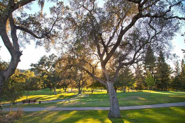 A view from Bennett Valley Golf Course