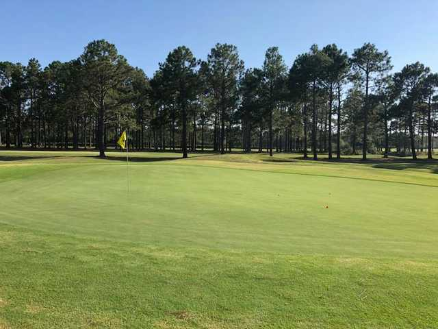 View of a green at Sandpiper Bay Golf & Country Club