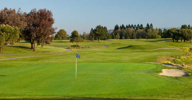 A sunny day view of a green from Shoreline Golf Links at Mountain View.