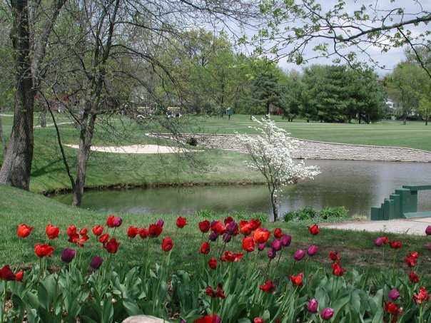A view of the 11th green with red tulips in foreground at Worthington Hills Country Club