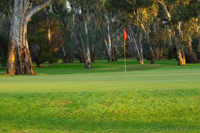 View from a green at Benalla Golf Club