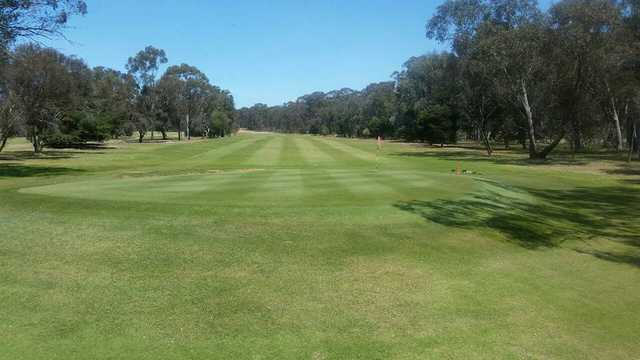 View of a green at Benalla Golf Club