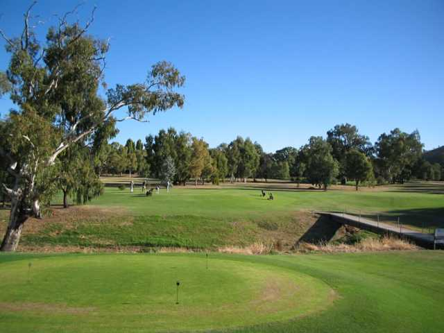 View from the puttin green at Gundagai District Golf Club