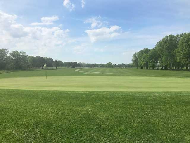 Looking back from a green at Mallard Creek Golf Club