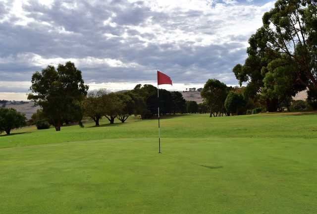 View from a green at Camperdown Golf Club