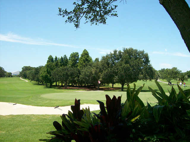 A view from Dunedin Golf Club