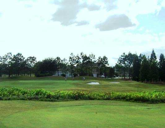 A view of green #8 at Plantation Palms Golf Club