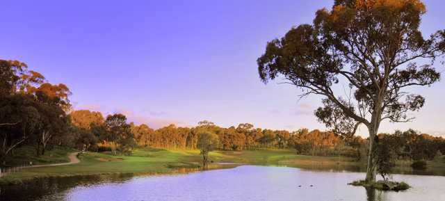 View of a green at Flagstaff Hill Golf & Country Club