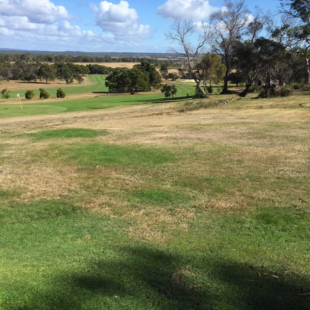 View of a green at Bridport Golf Club