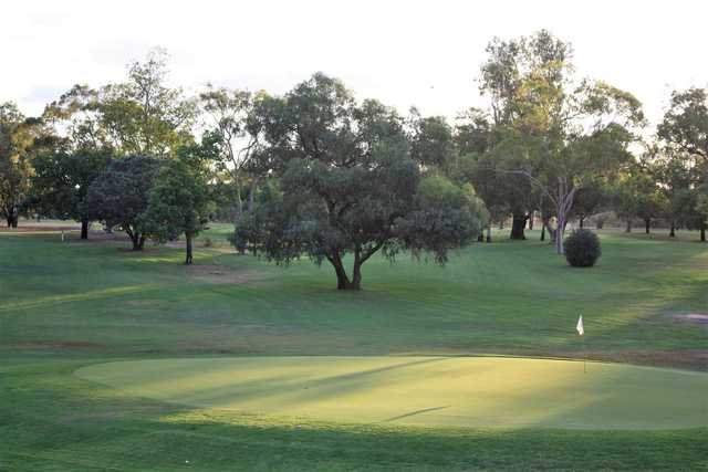 A sunny day view of a hole at Moree Golf Club.