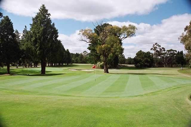 View of a green at Blackwood Golf Club