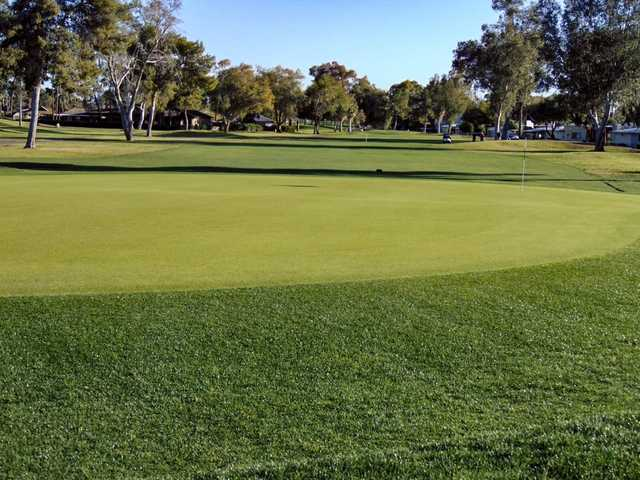 View of a green at Arizona Golf Resort