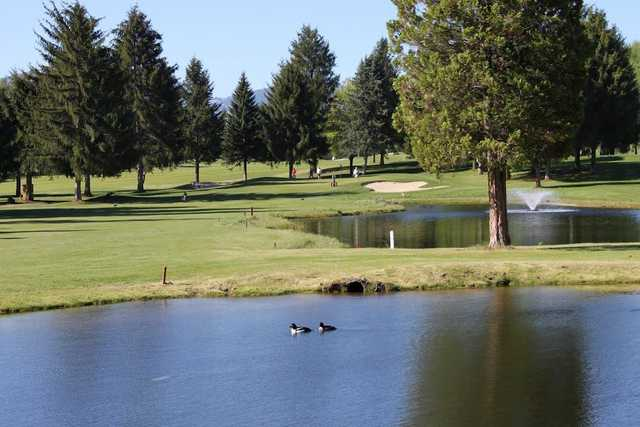 A view over the water from Birchbank Golf Course.