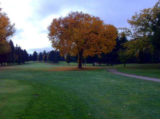 A fall day view from Birchbank Golf Course.