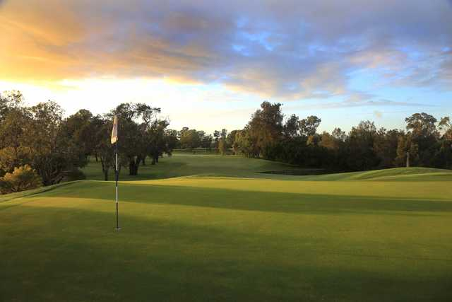 Looking back from the 3rd green at Brisbane Golf Club