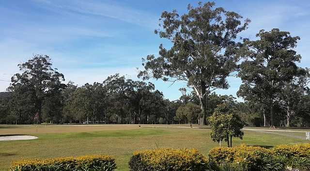 A view of a green at Kempsey Golf Club.