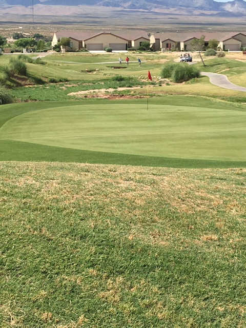 View of a green at Coyote Willows Golf Club