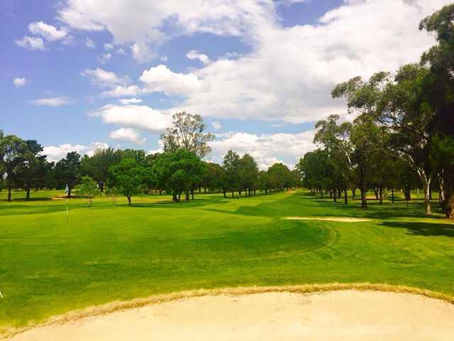 Looking back from a green at Richmond Golf Club