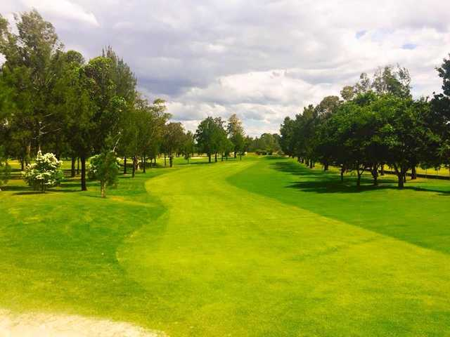 View from a fairway at Richmond Golf Club
