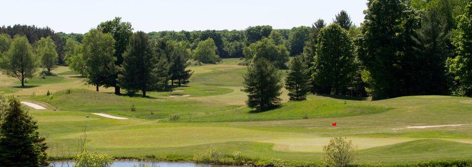 Mistwood Golf Course - MI