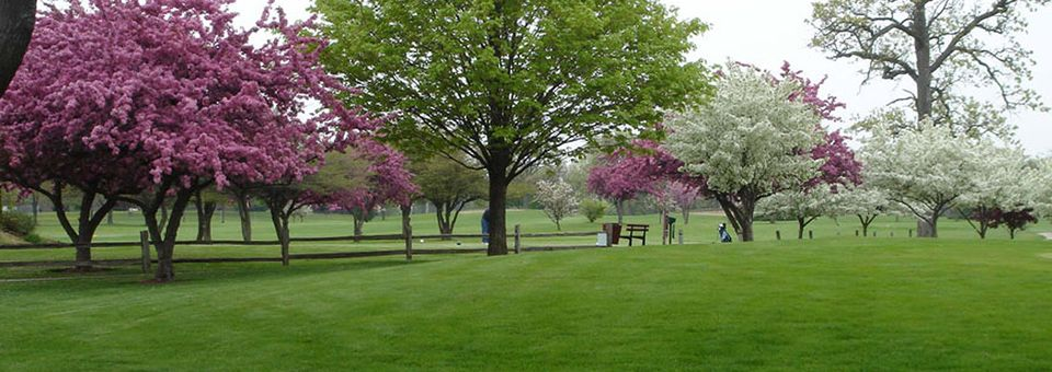 Shiloh Park Golf Course