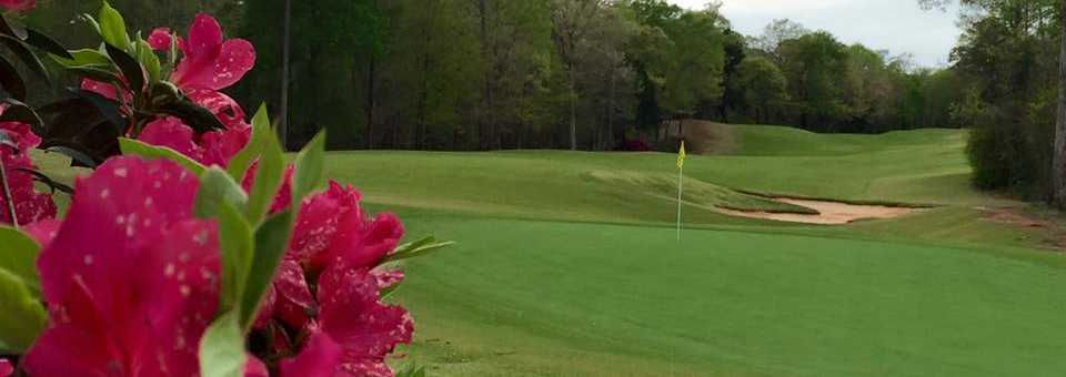 Dancing Rabbit Azalea Course