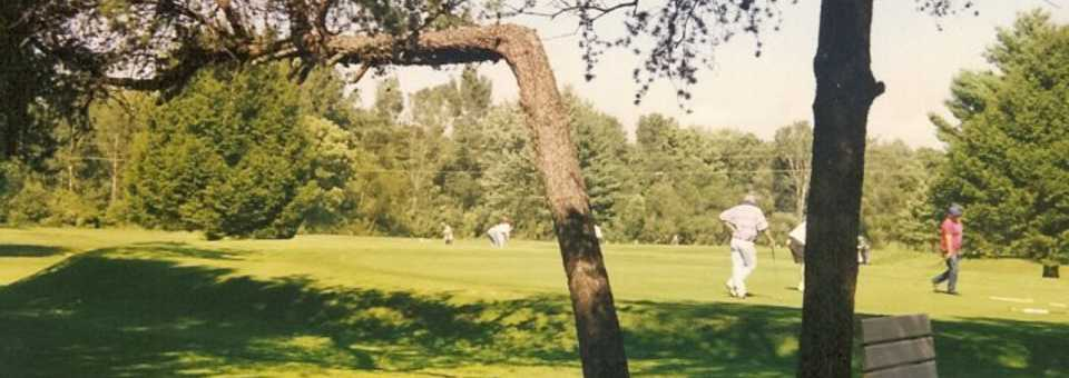 Bent Pine Golf Club - MI